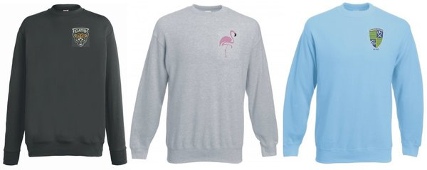Embroidered Sweatshirt in various colours